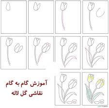 عکس, روش کشیدن گل لاله آموزش نقاشی قدم به قدم