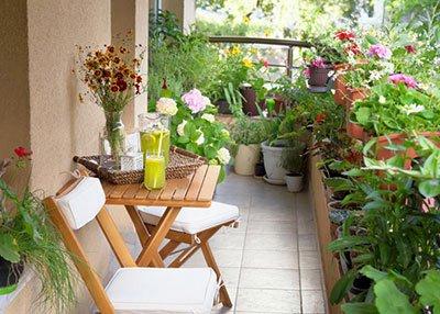 عکس, آموزش ساختن باغچه در حیاط کوچک یا بالکن