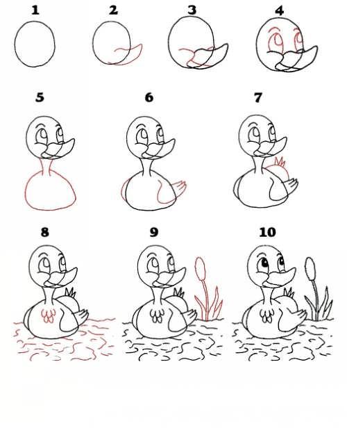 عکس, کشیدن و نقاشی اردک بامزه در ده قدم