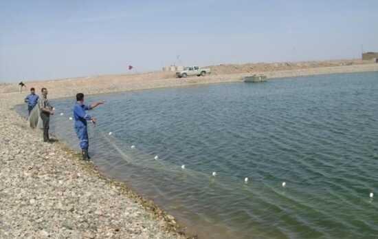 عکس, همه چیز در رابطه با استخر و  پرورش ماهیان گرمابی