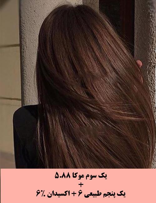 عکس, آموزش رنگ کردن موها به رنگ قهوه ای موکا
