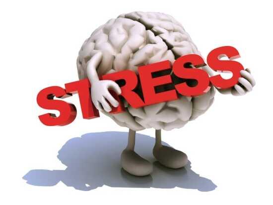 عکس, کاهش دادن به استرس با این چند روش ساده